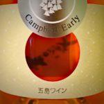 "<span class=""title"">プレゼントのワイン</span>"
